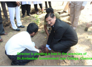 Director Planting sapling in the premises of Dr.Ambedkar Government Law College, Chennai